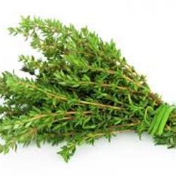 Herbs- Thyme 1/2 bunch