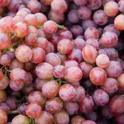 Grapes - Red Crimson or Ruby Seedless - 500g