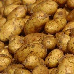 Potatoes Nicola - Box (10kg)