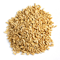 Oat Groats - 3kg VALUE BULK BUY