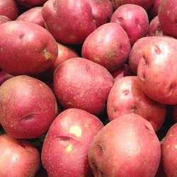 Potatoes Pontiac - 1kg