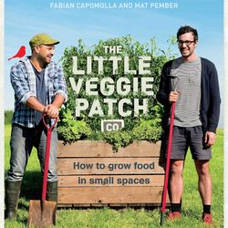 The Little Veggie Patch Co Book How to grow food in small spaces