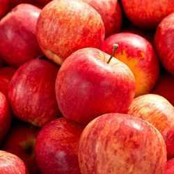 Apples Gala 1kg
